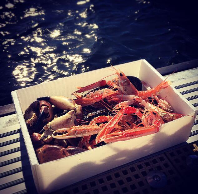 shellfish hamper